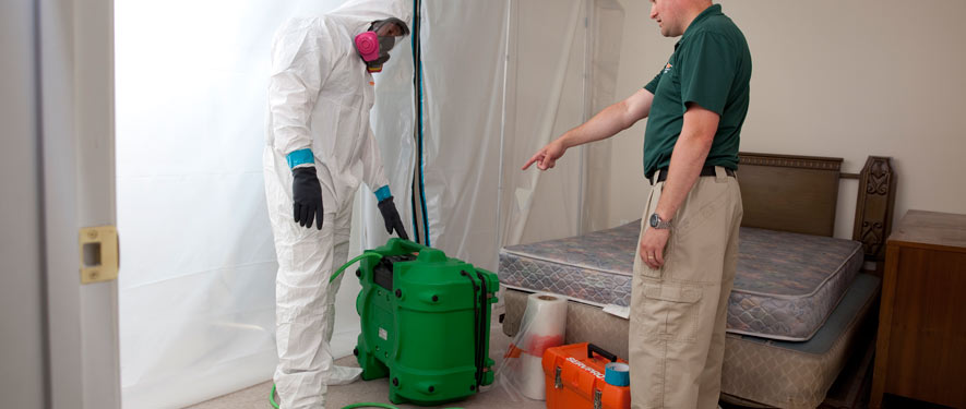 Oceanside, CA mold removal process